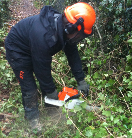 Council officer clearing fallen trees near Paulton