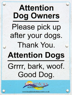 Dog-sign---Westward-Ho-250x329