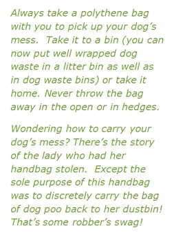 Dog-waste-advice
