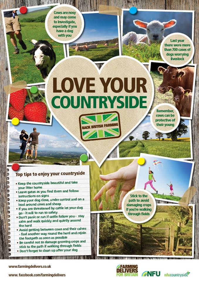 NFU Dogs Poster